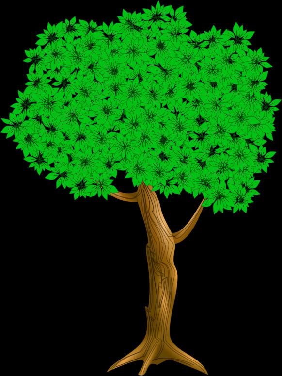 nursery rhyme   i had a little nut tree